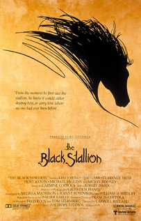 The Black Stallion dvd movie video